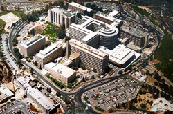 Hadassah Medical Center.