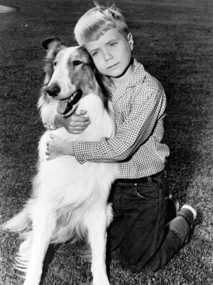Lassie y Timmy.